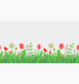 spring grass seamless border with flowers vector image vector image