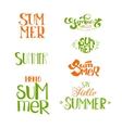 Summer calligraphic designs set vector image