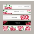 Banners template raspberry design vector image