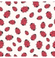 Cute ladybirds seamless pattern Print for vector image vector image