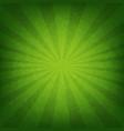 green sunburst poster vector image vector image