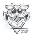 Owl - time to sleep vector image