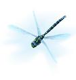 sad dragonfly vector image vector image