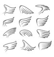set hand drawn bird wings vector image