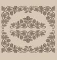 set vintage design elements hop branches vector image vector image