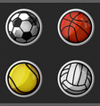 sport equipment set 3d icons collection balls vector image