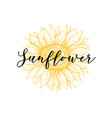 sunflower yellow hand drawn ink pen vector image vector image