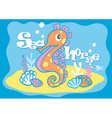 Baby sea horse vector image