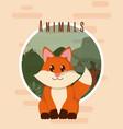 fox cute animal card vector image