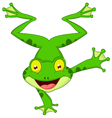 Funny frog cartoon standing on its hand vector image vector image