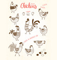 images chickens hens cocks eggs in vector image vector image