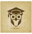 Owl in graduation cap wisdom symbol old