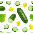 realistic 3d green whole cucumber and slices vector image