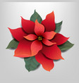 red poinsettia isolated grey background vector image vector image