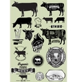 set templates on theme cow beef vector image vector image