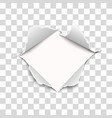 snatched middle transparent paper vector image vector image