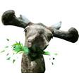 low poly elk vector image