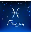 01 Pisces horoscope sign vector image