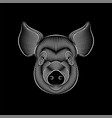 engraving stylized pig portrait on black vector image vector image