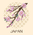 japan promo poster with sakura branch and pattern vector image vector image