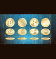 set of cryptocurrency coins vector image vector image