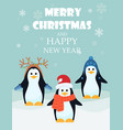 adorable penguins with vector image vector image