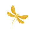 beautiful dragonfly with bright yellow wings and vector image vector image