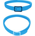 cat collar on white background