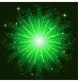 Firework green vector image vector image