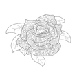 rose flower coloring for adults vector image vector image