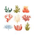 seaweed set colorful underwater marine plants vector image
