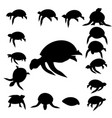 set tortoise silhouette vector image