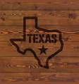 texas state symbol branded on old wood wall vector image vector image