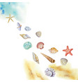 watercolor multicolored seashells and beach vector image vector image