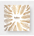design template with gold feathers for vector image