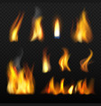 fire realistic red orange tongue flame blazing vector image