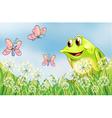 Frog and butterflies in the garden vector image