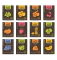 Hand drawn fruits posters set vector image vector image