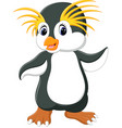 happy cartoon penguin rockhopper vector image vector image