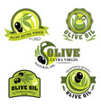 olive oil icons for product labels vector image vector image