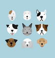 set of dogs flat style vector image vector image