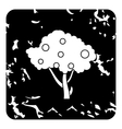 Tall fruit tree icon grunge style vector image