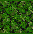 tropical pattern palm summer green palm leaves vector image