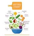 Vitamin salad vector image vector image