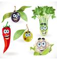 Funny cute vegetables smiles celery cauliflower vector image