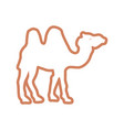camel cartoon silhouette neon lines vector image vector image