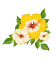 composition hibiscus flowers and leaves vector image vector image