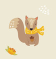 cute squirrel in a scarf with acorn forest animal vector image vector image
