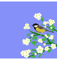 little bird perched vector image vector image