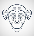 Monkey Drawing vector image